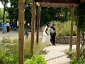 Lakeside-wedding-ceremony-at-Marianis-Venue-8-7-2048-2