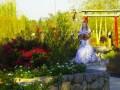 the bride arriving December 26, 2016