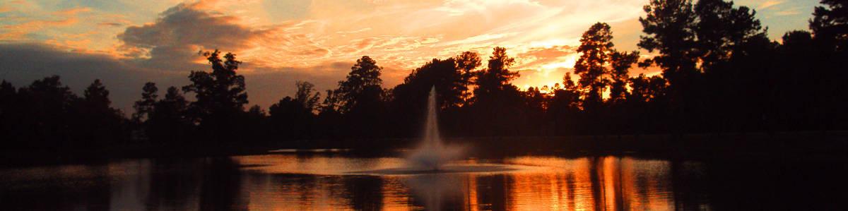 evening lake view at Mariani's venu